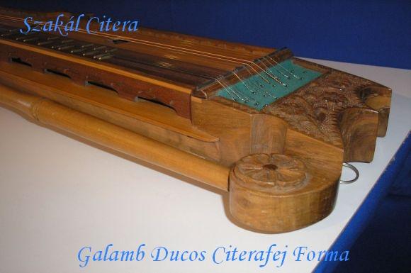 Galamb Dúcos Citera Feje